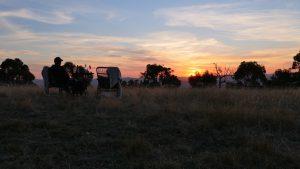 Top of the Yarra Valley Sunsets at Kangaroo Ridge Retreat.