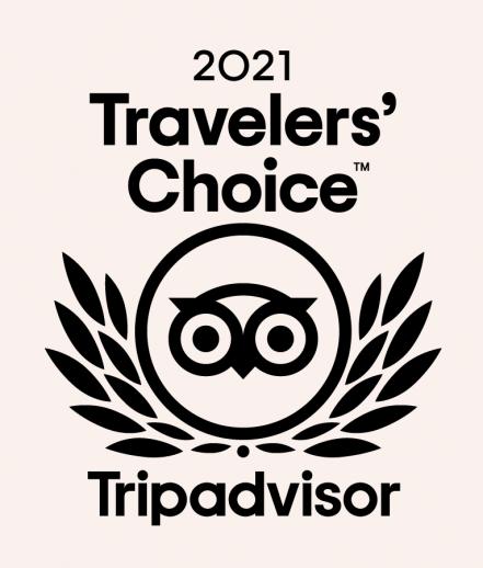 Travelers Choice Badge 2021